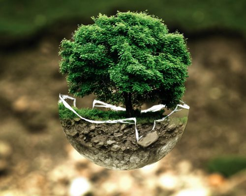 environmental-protection-683437